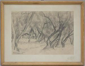 serra_zanetti_paula-paesaggio_con_alberi~OMc70300~10348_20150519_345_3354.jpg